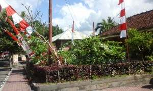 バリ島現地レポート