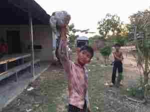鶏を捕まえた子ども