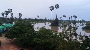 雨季の風景