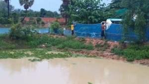 池の水位が上がっています