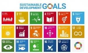 SDGs検定0